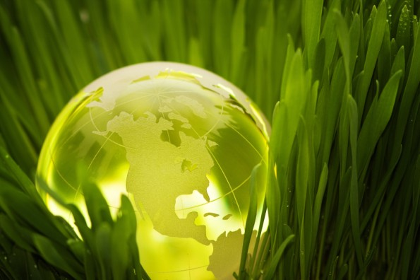 Glowing globe in grass