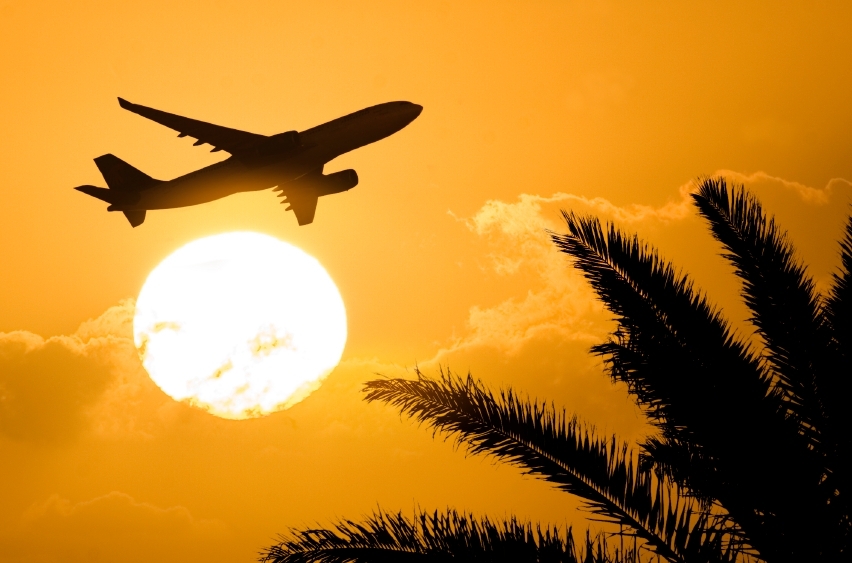 Photo of airplane against sunset and palm trees