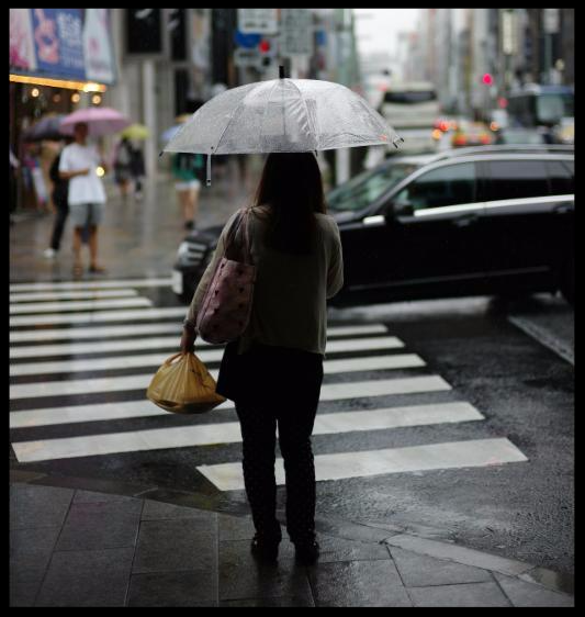 Pedestrian with umbrella in crosswalk