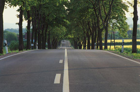 An empty, narrow paved road in a rural area