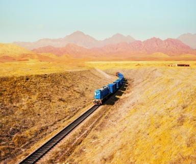 A blue train in a yellow field.