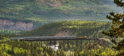 A train on a bridge in the wilderness.