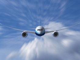 Plane flying through sky